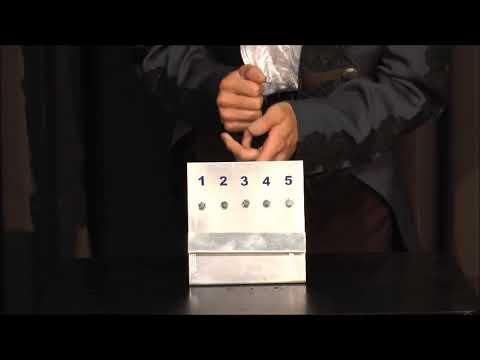 Bolt Prediction by Sorcier Magic