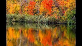 AUTUMN PHOTOGRAPHY IDEAS - Fall Photography Reflections