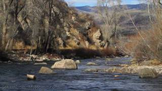 Steamboat Springs, Colorado - Fly fishing the Yampa and Elk rivers