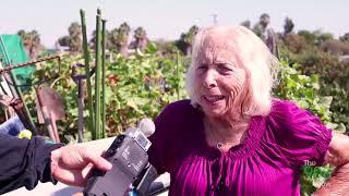 The 908 Show - Long Beach Community Garden