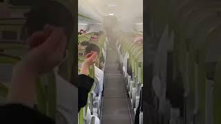 Pracownicy linii lotniczej emirates gorąco pozdrawiają aktualnie rządzących