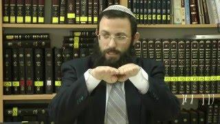 76 הלכות שבת או''ח סימן שמ סע' יג-יד הרב אריאל אלקובי שליט''א