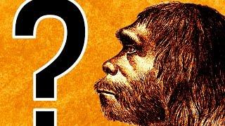 What If Neanderthals Didn't Go Extinct?