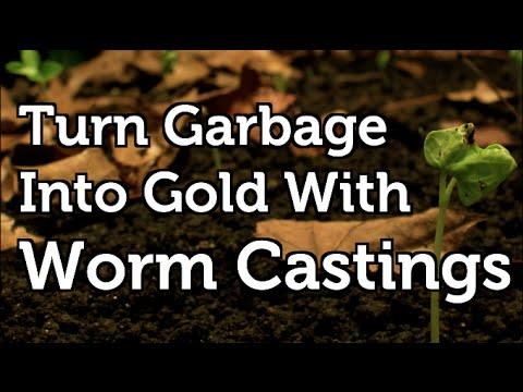 Gamot para sa mga sanggol worm