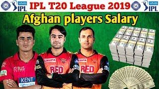 IPL 2019 : Afghan players Salary in IPL 2019 / Rashid Khan Mujeeb Zadran and Mohammad Nabi