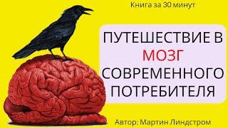 Пересказ и идея книги: Путешествие в мозг потребителя #1