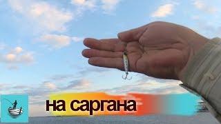 На что ловят саргана в черном море