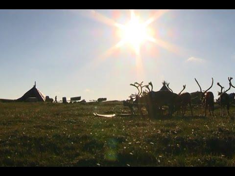 Визитная карточка НАО (Ненецкий автономный округ)