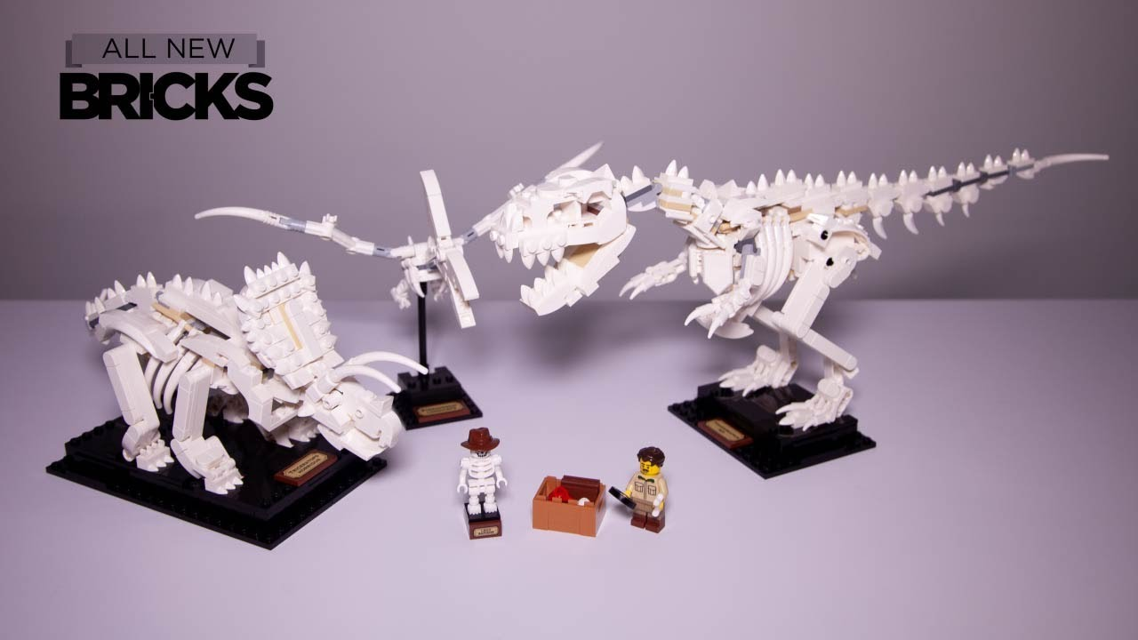 Lego Ideas 21320 Dinosaur Fossils Speed Build