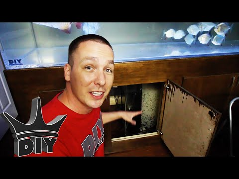 TOP 10 TIPS  for cooling your aquarium!