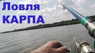 Ловля КАРПА на поплавочные удочки с дальним забросом. Карповая Рыбалка. Ловля на поплавок