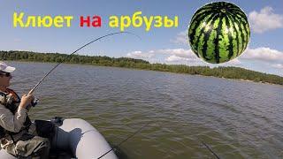 Брик отчеты о рыбалке людвиново