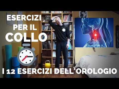 Struttura umana e la funzione delle articolazioni e la struttura della funzione muscolare scheletric