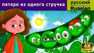 пятеро из одного стручка - сказки на ночь - дюймовочка - 4K UHD - русские сказки
