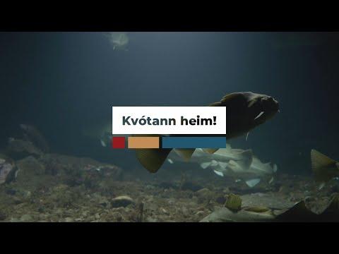 Gróðasókn á kostnað vistkerfisins er tilræði við framtíðina