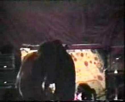 Kyuss - El Rodeo (Milano 1995)