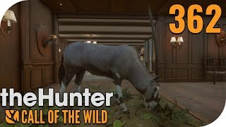 THE HUNTER: CALL OF THE WILD #362 - RIESIGER SPIEßBOCK! 🐗 || PantoffelPlays