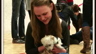SPCA Gives Back