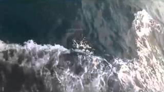 Ezginin Günlüğü - Gemi