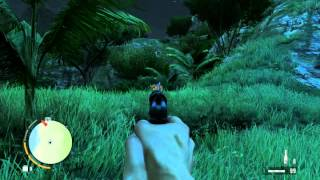 Far Cry 3 HD 6670 Maxed Out Graphics DirectX11