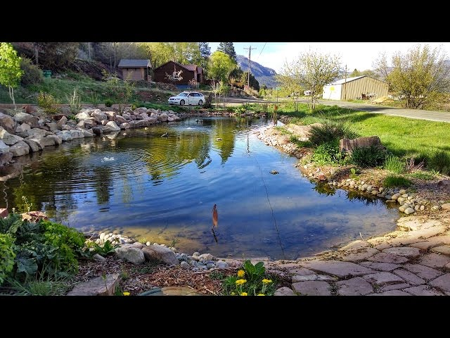 Building Large Pond & Waterfall = Dream Landscaping Durango Colorado & Gardenhart Landscape & Design