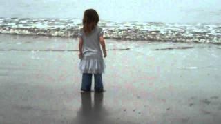 Sugarwings at the Ocean