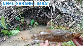 Download Video MANCING LIMBAT DI SINI BIKIN GAK PINGIN PULANG MP3 3GP MP4