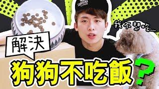 淘寶開箱:搖控送飯!解決狗狗「不吃飯」的方法?[中文字幕]