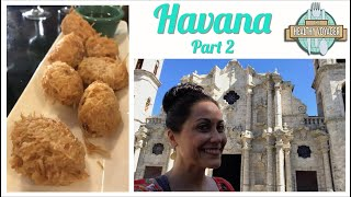The Healthy Voyager Havana Part 2