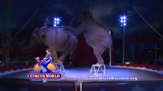 Wild Rides 3/6 Ringling Circus World - YouTube