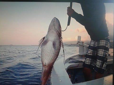La licenza per pescare in Tatarstan