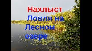 Нахлыст на озер
