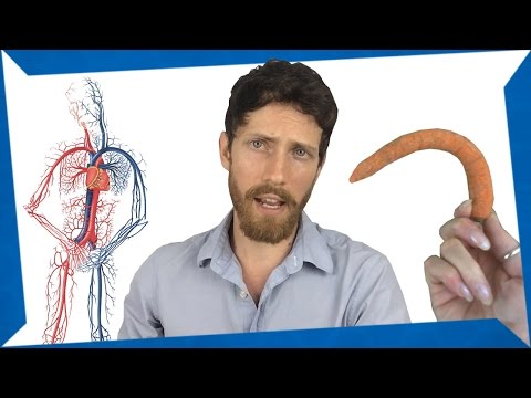 Co koupit od prostaty