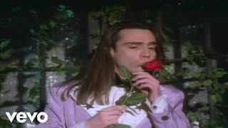 Crash Test Dummies - Swimming In Your Ocean (Official Video)