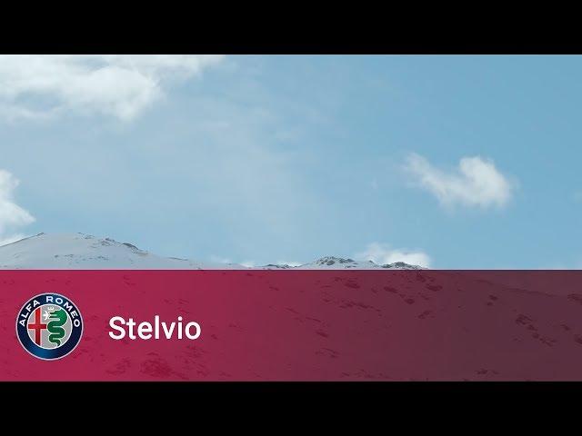 Alfa Romeo Stelvio - I've been waiting for you