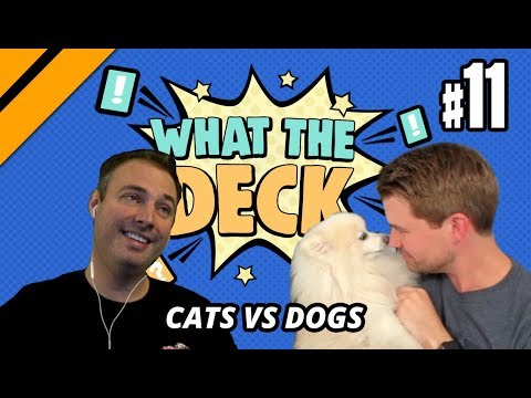 What The Deck w/ Brian Kibler | Ep 11 Cats vs Dogs | MTGA