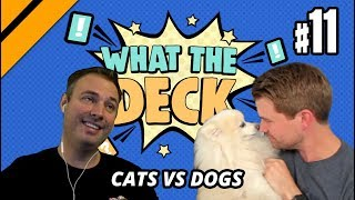 What The Deck w/ Brian Kibler   Ep 11 Cats vs Dogs   MTGA