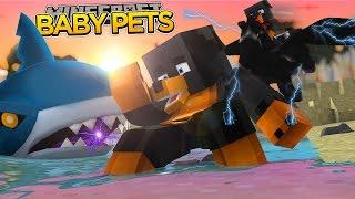 BABY MAX FALLS INTO A SHARK TANK!!!! Minecraft - Donut The Dog Adventures -