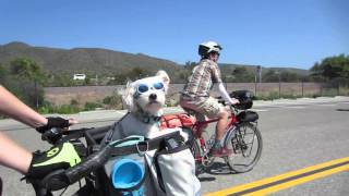 March Bike Tour: San Clemente To San Elijo - Milestone Rides