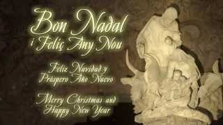 preview picture of video '2014 Merry Christmas | Bon Nadal | Feliz Navidad'