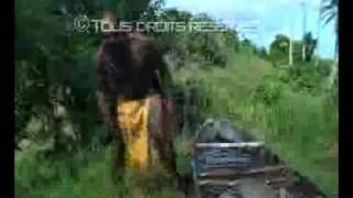 preview picture of video 'extrait racines de Gommier (real pekmezian)'