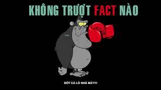 269 Rick   Không Trượt Fact Nào   YouTube