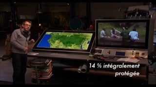 Vidéo LCB «Bois tropicaux et développement durable»