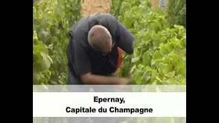 preview picture of video 'Epernay, une ville où il fait bon vivre !'