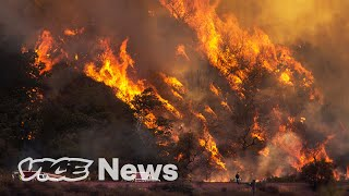 Wildfires, Disappearing Fish, Two Hurricanes And Other Ways the World's Ending