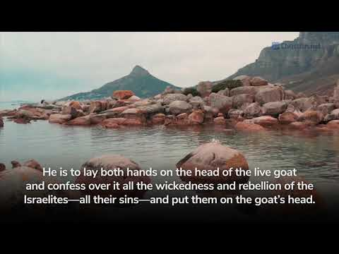 Leviticus 13:1 -46: Regulations About Defiling Skin Disease | Bible Stories