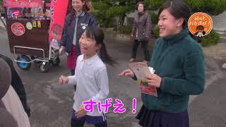2019/03/06放送・知ったかぶりカイツブリにゅーす
