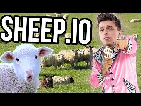 JSEM PASÁK ... OVCÍ | Sheep.io
