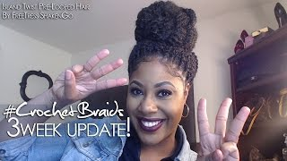 3 Week Update Island Twist Crochet Braids