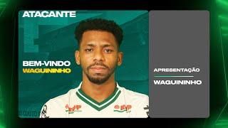 Seja bem-vindo, Waguininho!